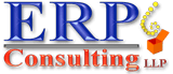 ERP Consulting LLP Logo